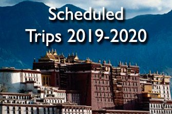 scheduled-trips